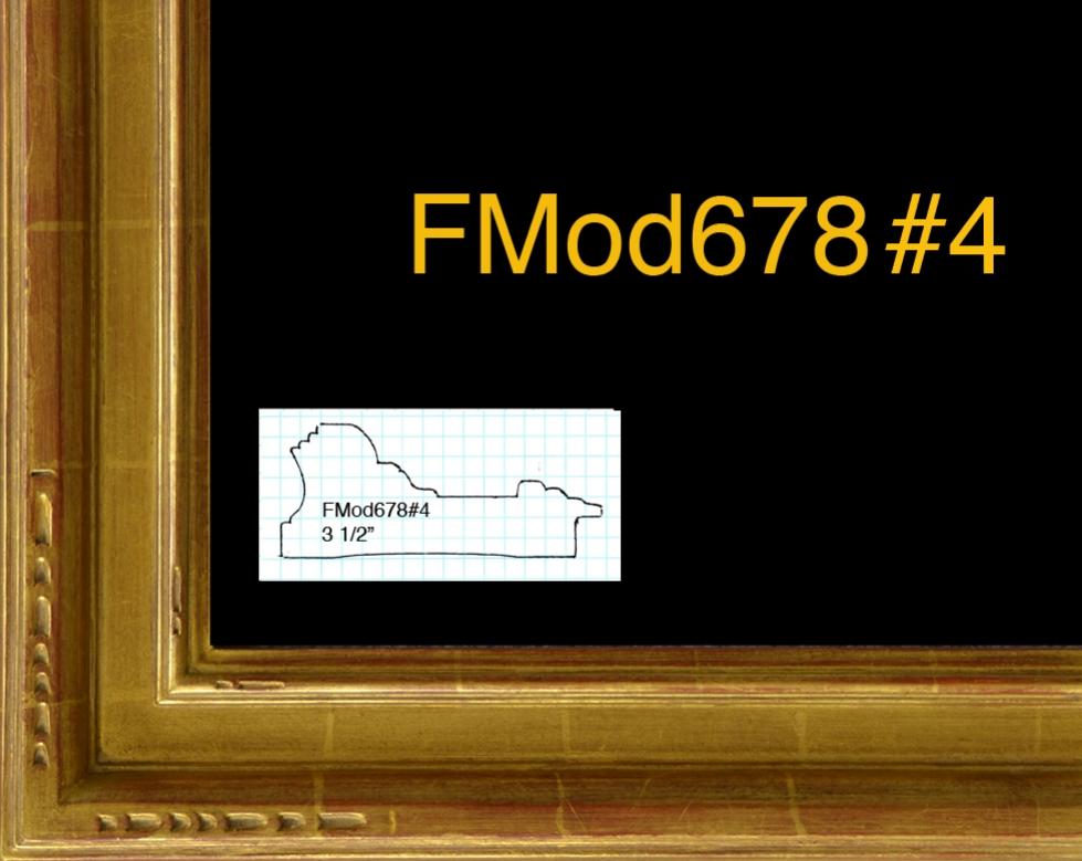 FMod678#4.jpg