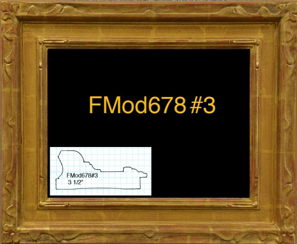 FMod678#3.jpg