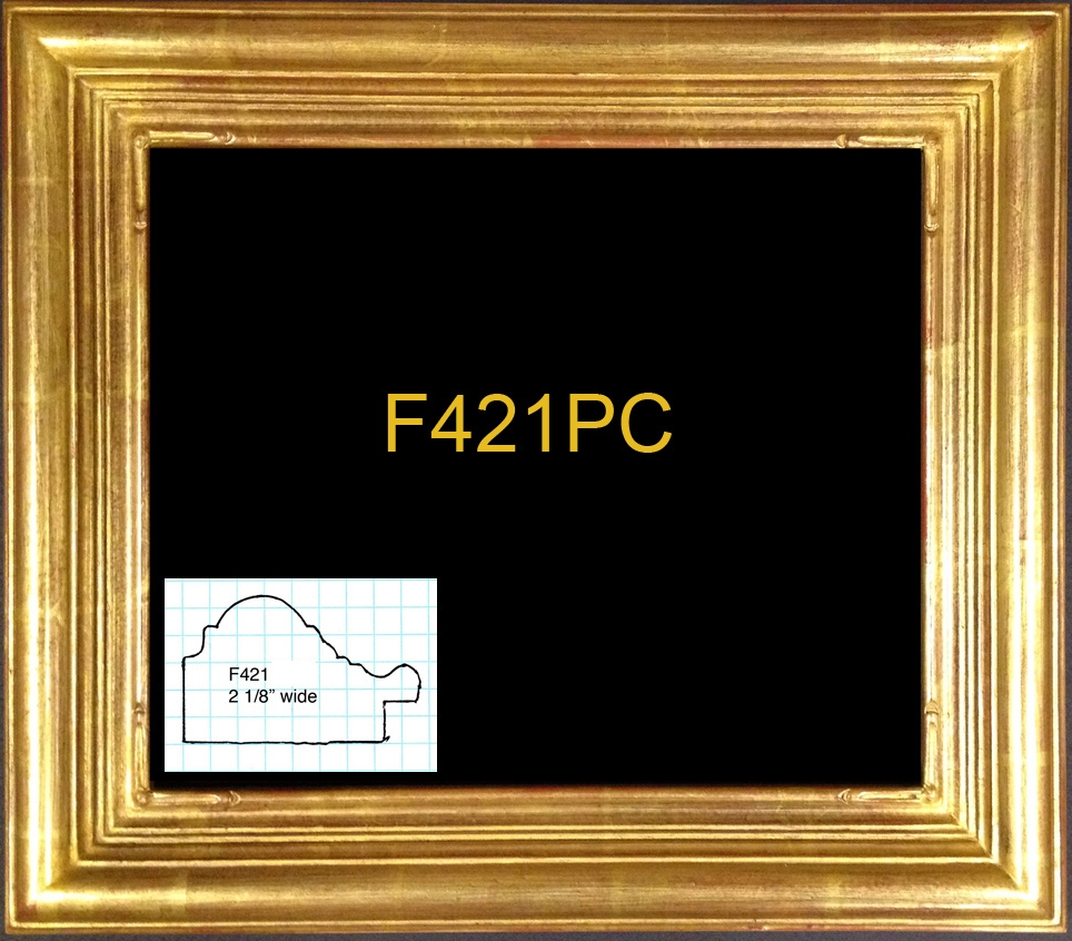 F421PC copy copy.jpg