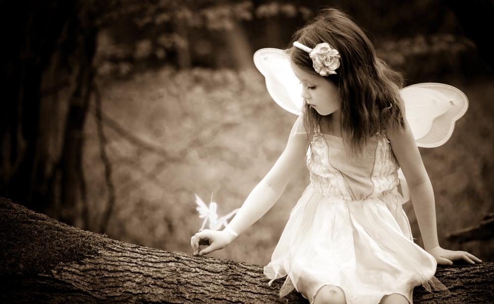 DSC_4137 Fairy.jpg