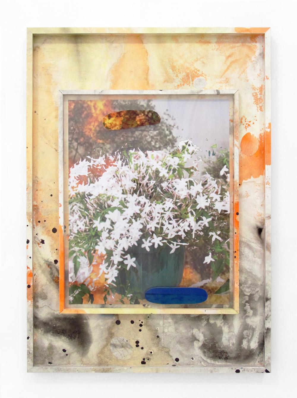 "Backyard Wonders #2, 2013 acrylic, oil, paper, ink jet print, wood, on ikea frame 40.5 "" x 28.5 """
