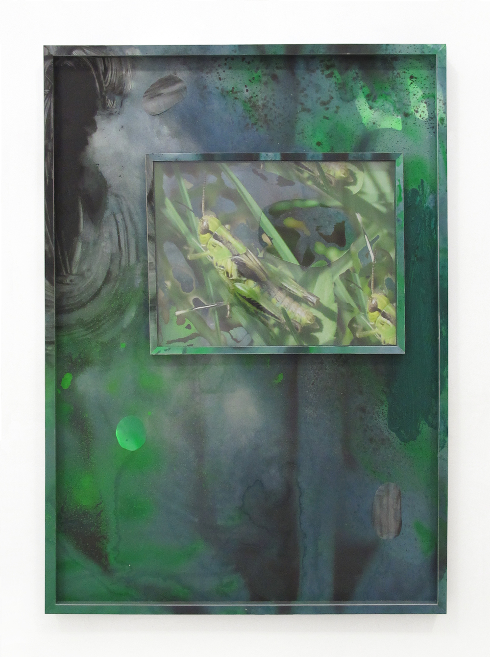 "Backyard Wonders #4, 2013 acrylic, oil, paper, ink jet print, wood, on ikea frame 40.5 "" x 28.5 """