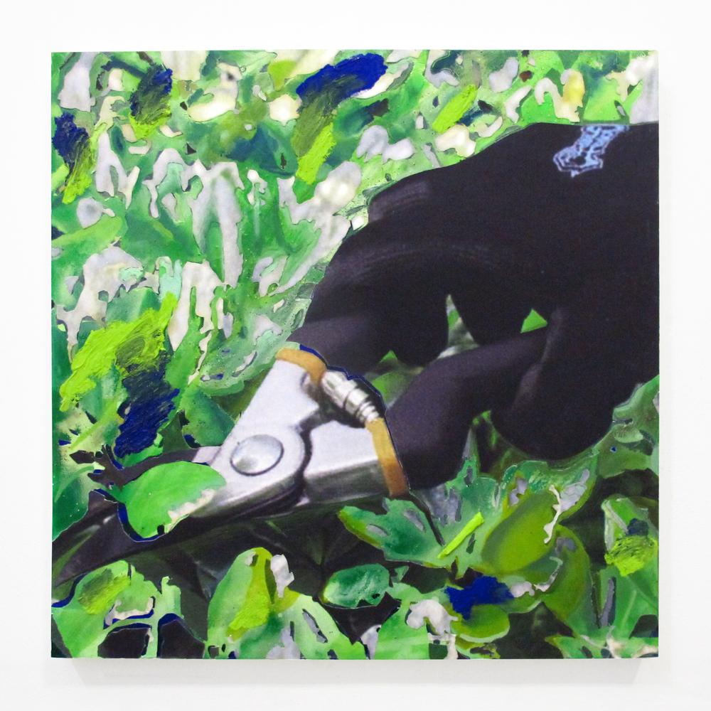 "Gardening Glove #5, 2013 oil, pencil, ink jet print, on panel  18 "" x 18 """