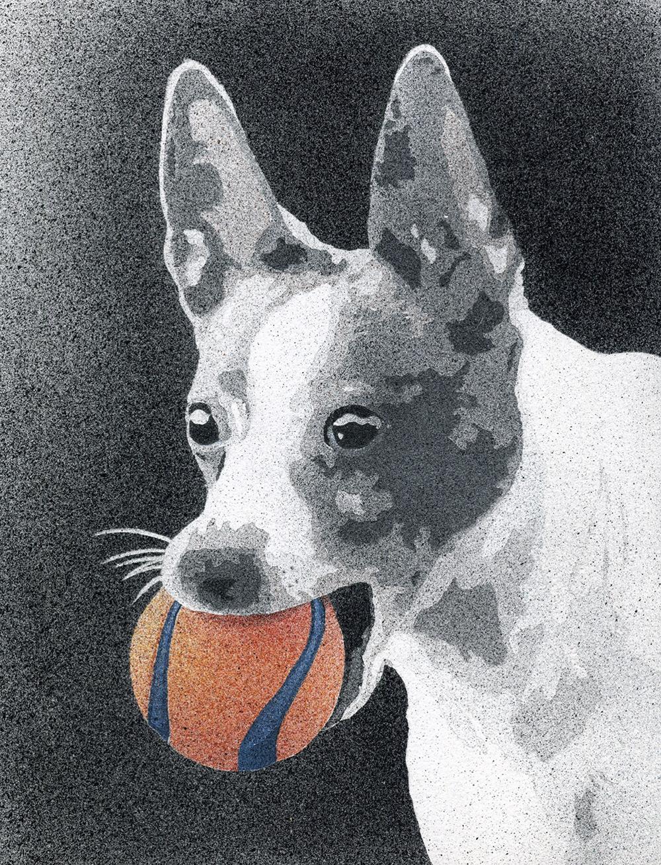 Ernie (Pet Portrait)