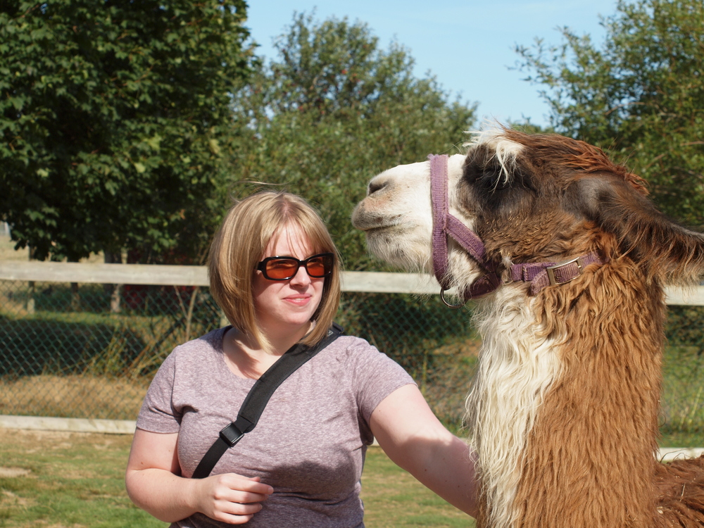 I was terrified the Llama was going to head bonk me.