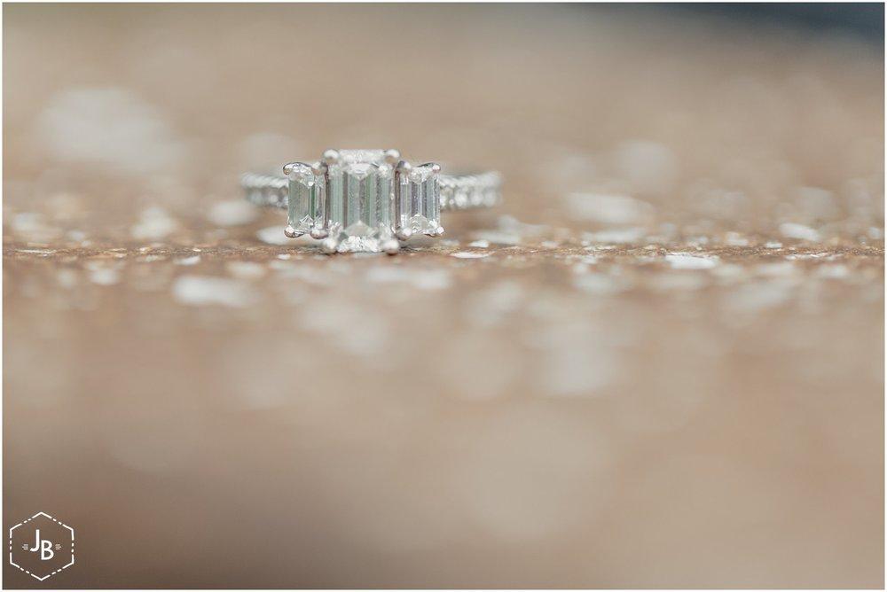 WeddingandEngagementFloridaPhotographer_0075.jpg