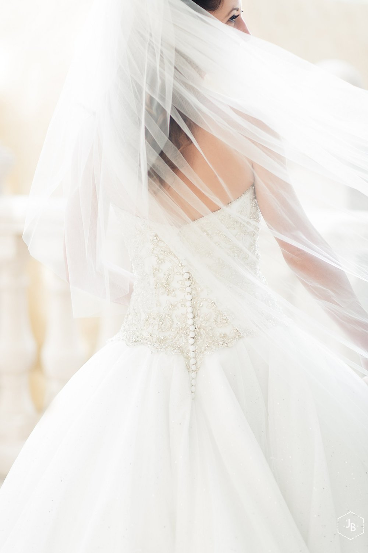 WeddingandEngagementFloridaPhotographer_2201.jpg