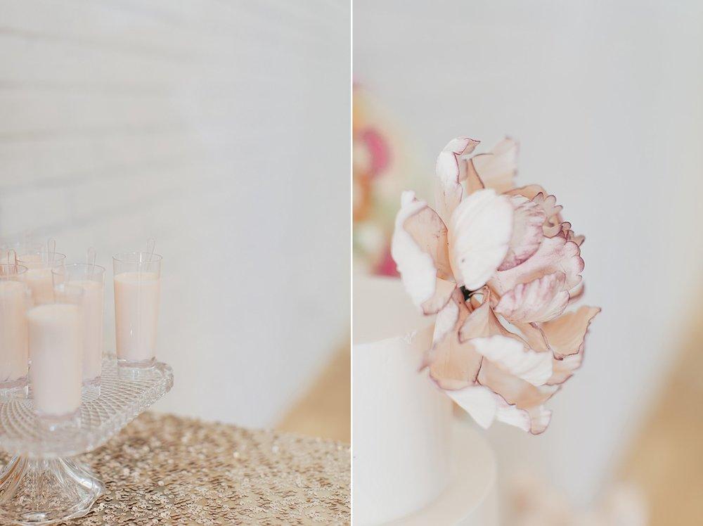 WeddingandEngagementFloridaPhotographer_2431.jpg