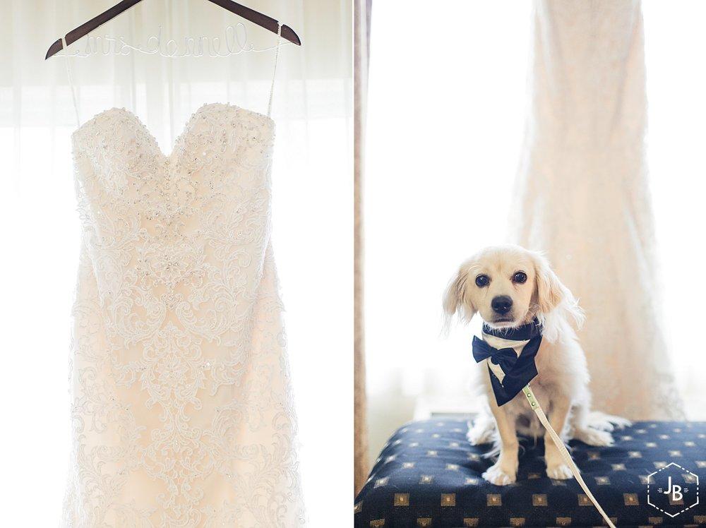 WeddingandEngagementFloridaPhotographer_2779.jpg