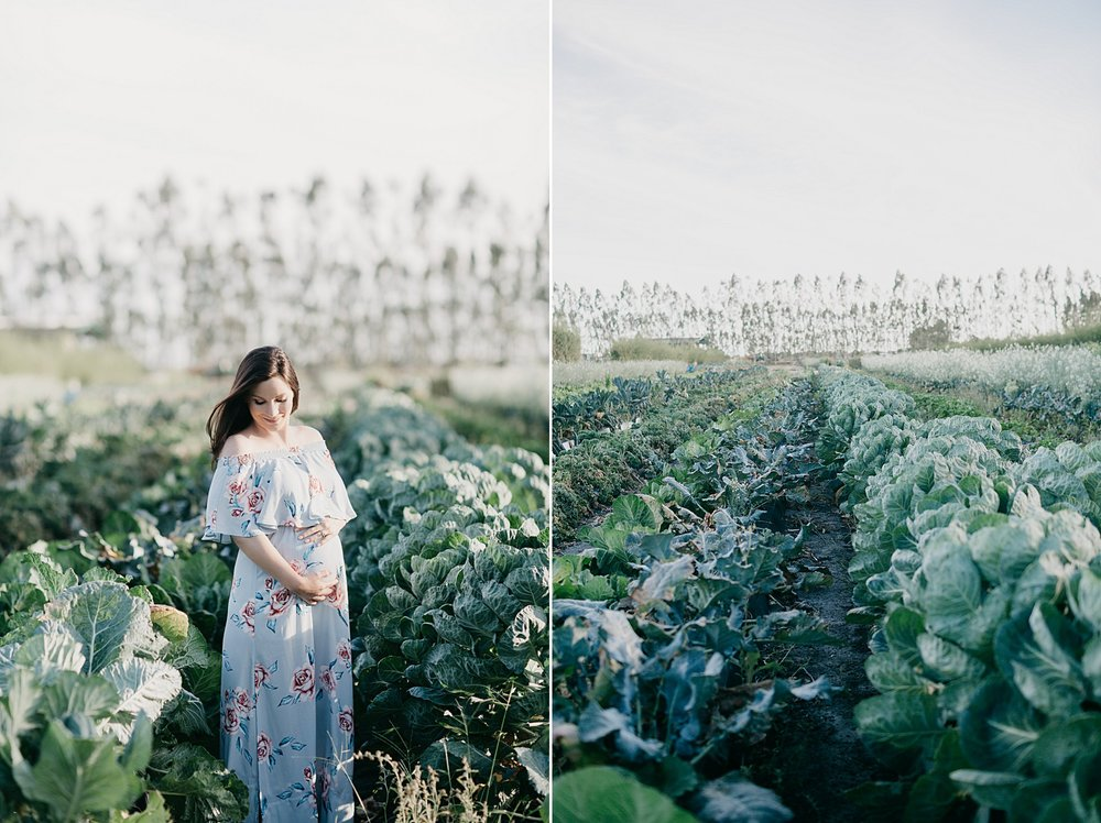 JessicaBordnerPhotography_1736.jpg