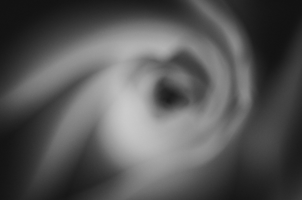 Impressions of a Rose- B&W- (2).jpg