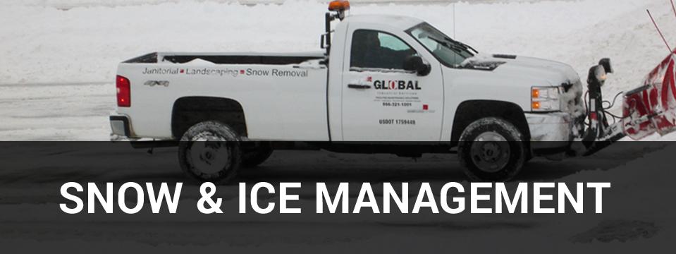 SNOW-sidebar images1.jpg