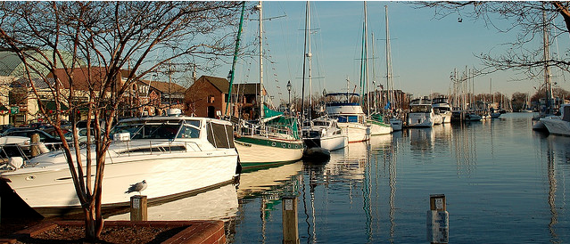 annapolis-harbor.png