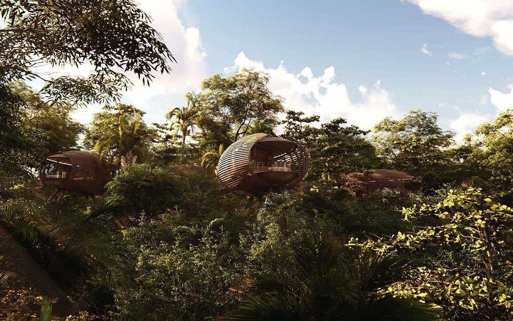Cocoon-shaped pods. (Courtesy of Studio Saxe)
