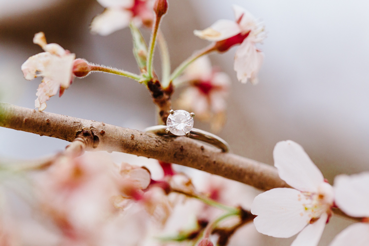 Engagement Ring on Spring Flowers in Peoria, Illinois