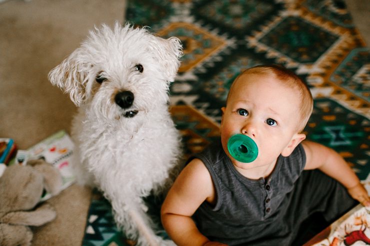 One year old baby boy and his puppy playing