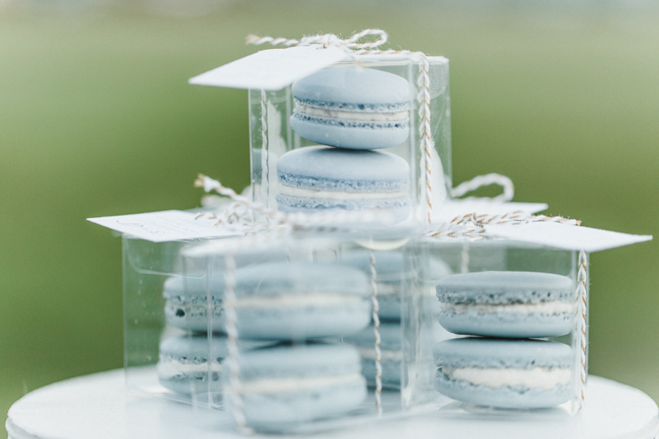 Wedding Reception macaroons as wedding party gifts