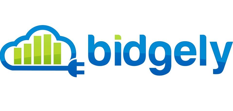 bidgely-logo.jpg