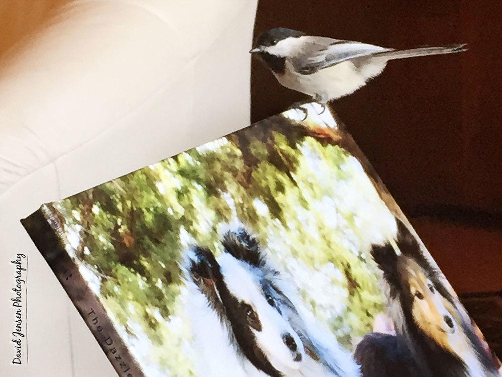 BirdPix.jpg