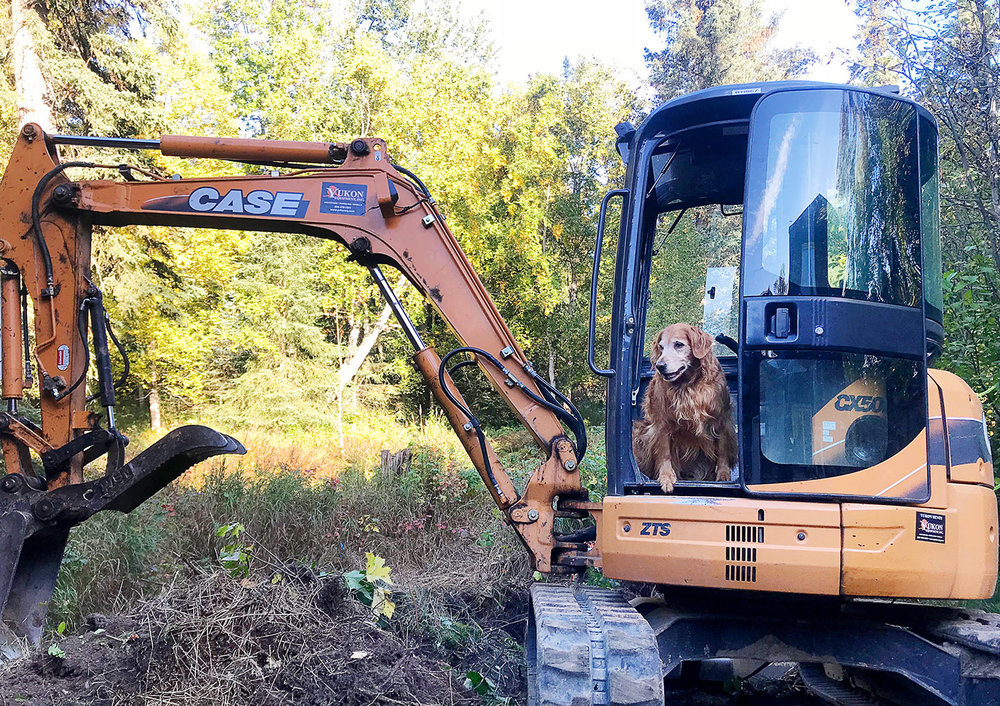 Layla supervises the crew as excavation and construction begins on the new David Jensen Photography studio in South Anchorage. We plan to open the new doors in January, 2019 with a Grand Opening/30th Studio Anniversary Celebration in May. 2019.