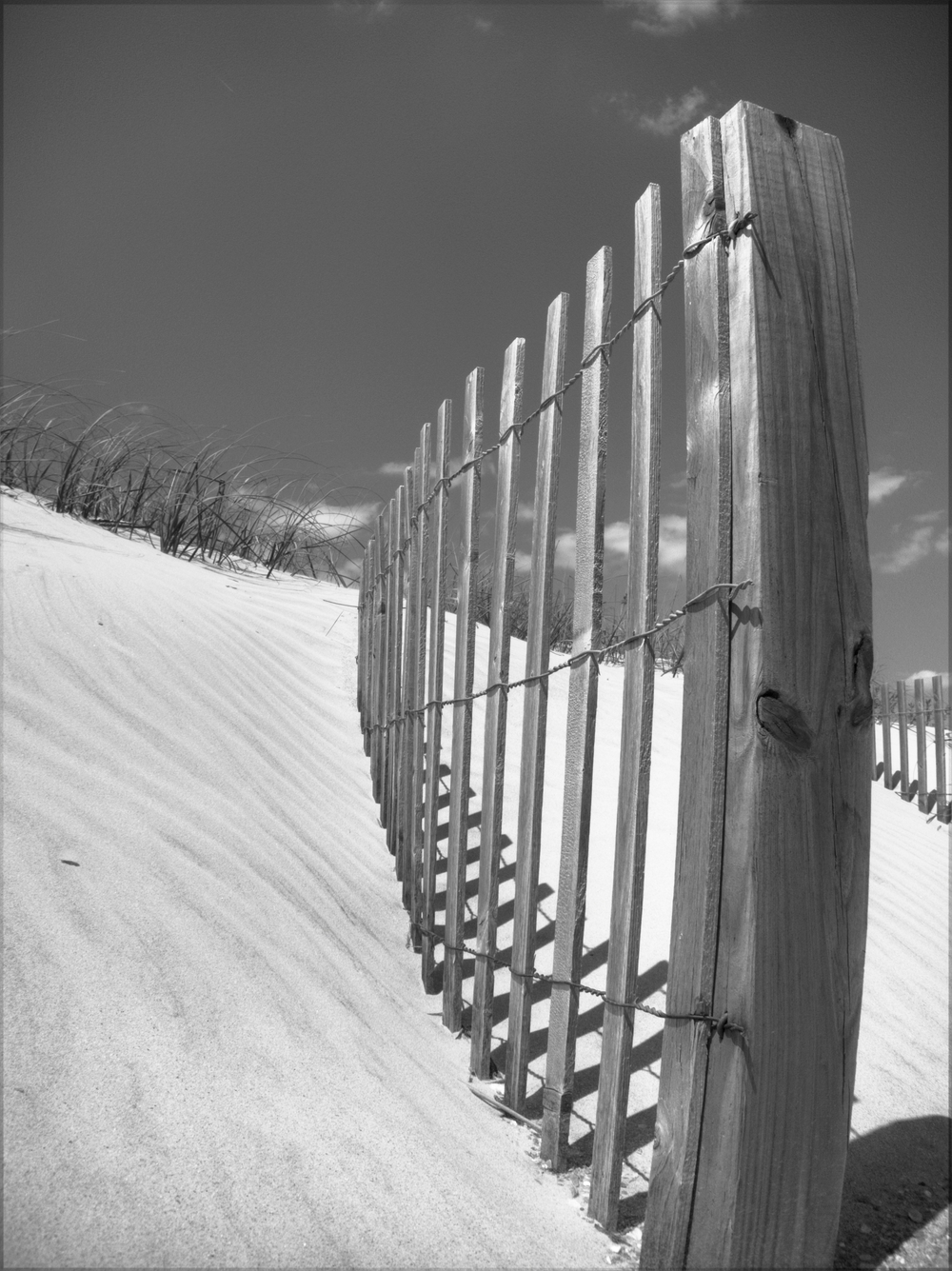 BW for CONDO beach photo.jpg