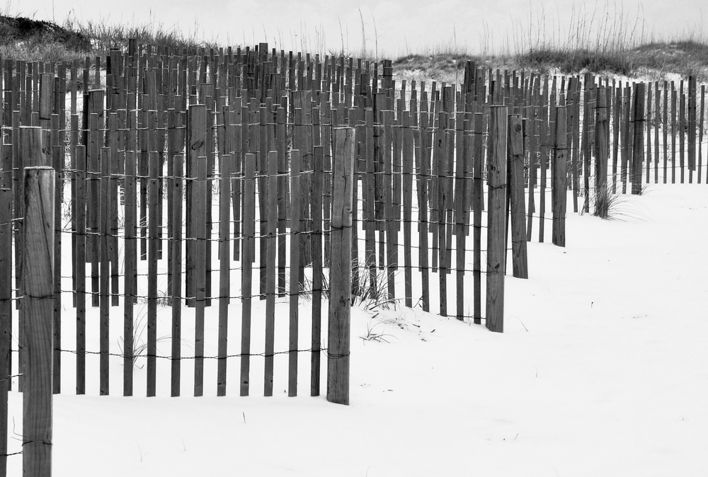 snow fences south end a.JPG