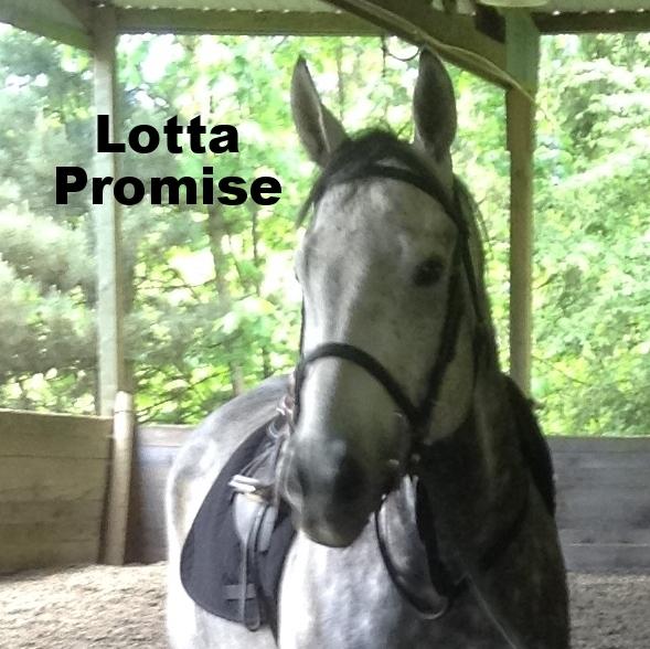 lotta_promise.jpg
