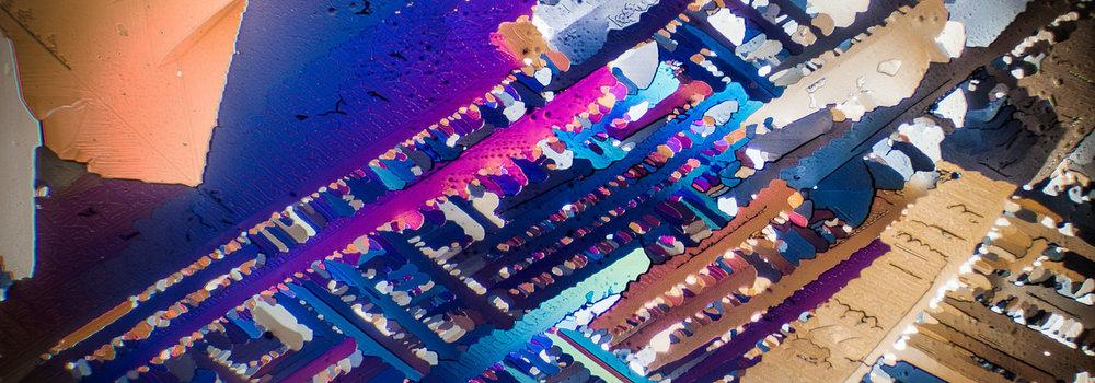 Photomicrography - Sampling the Grid