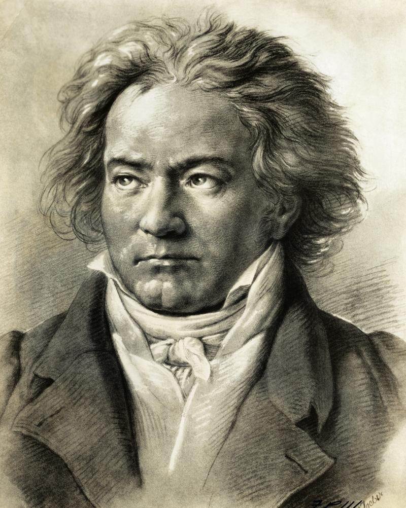 an analysis of the topic of the saga of beethoven Beethoven's sonata pathetique has any of you ever played beethoven's pathetique sonata 14 replies to this topic #1 guest:.