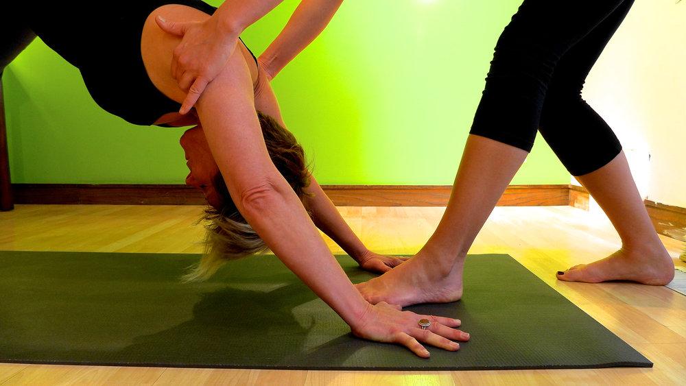 Yoga Therapy 1.jpg