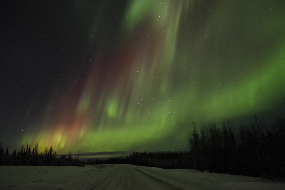 Aurora Borealis. Northern British Columbia, Alaska Highway. Fuji X-T1 / XF16 f/1.4