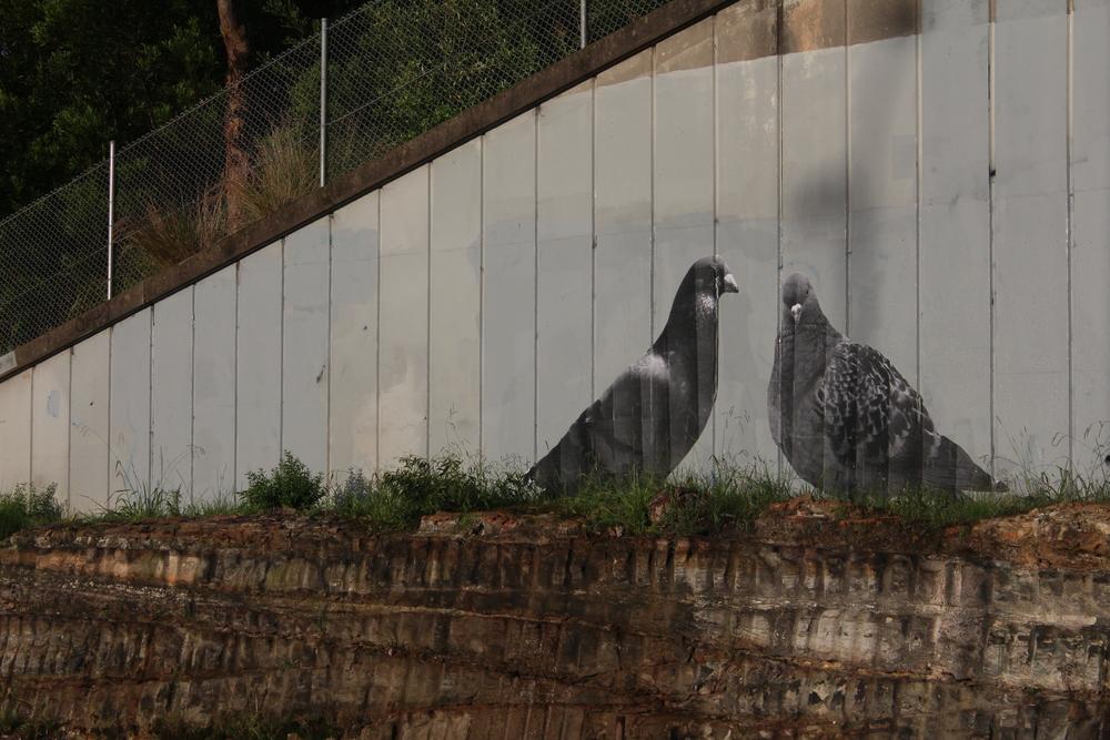 Sydney, Australia 2016