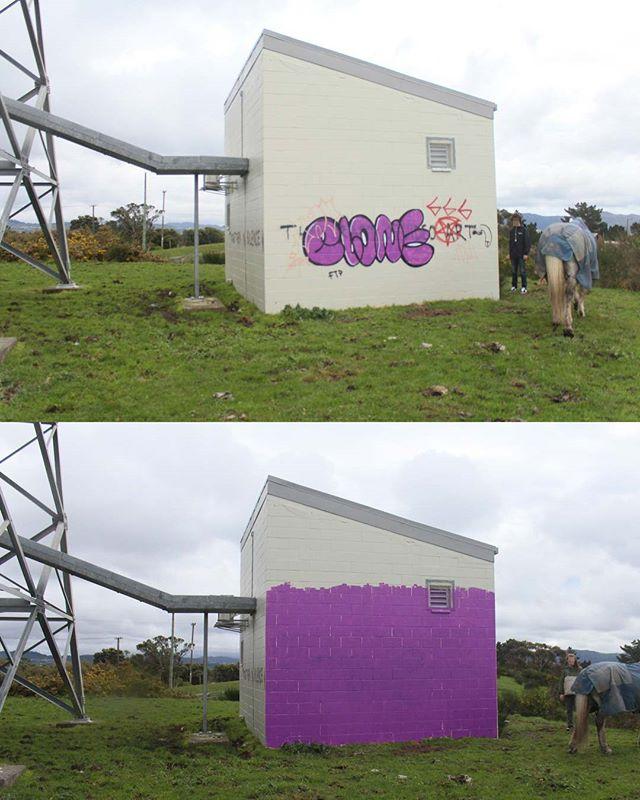 Contaminated Wall (Purple) 2017