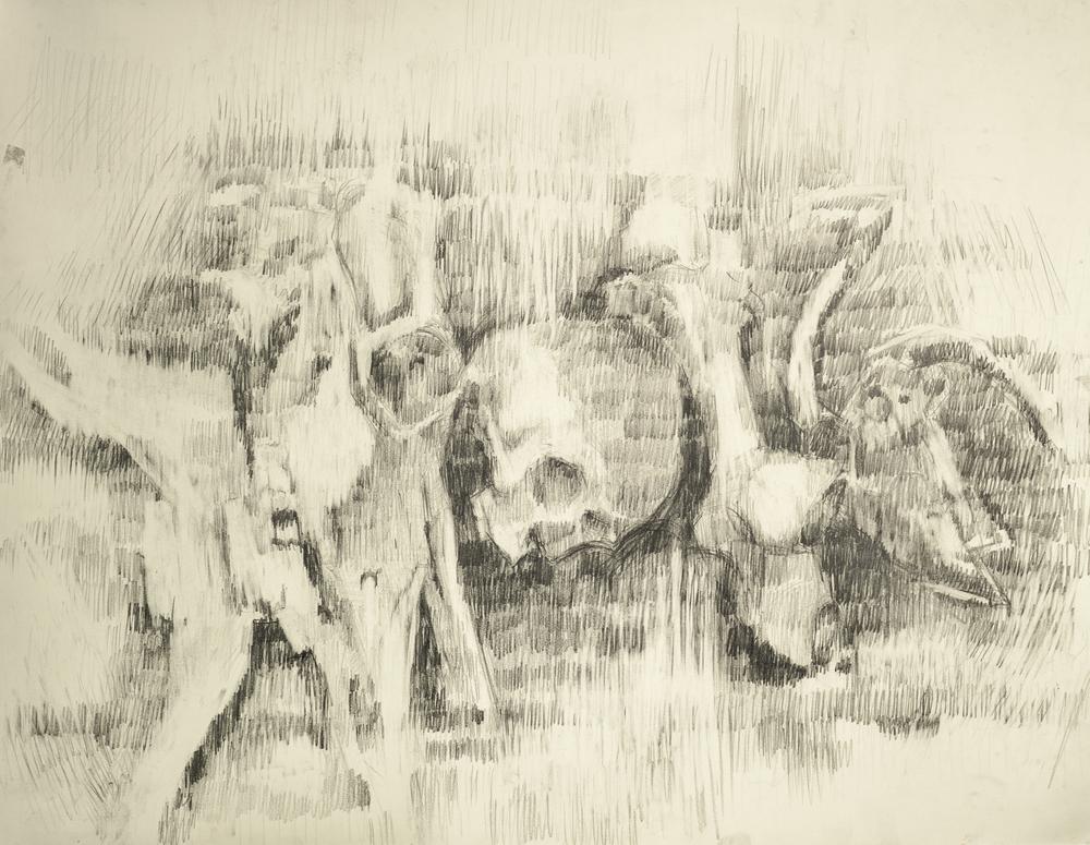 T.V Bones, Graphite on Paper Jesse Thomas