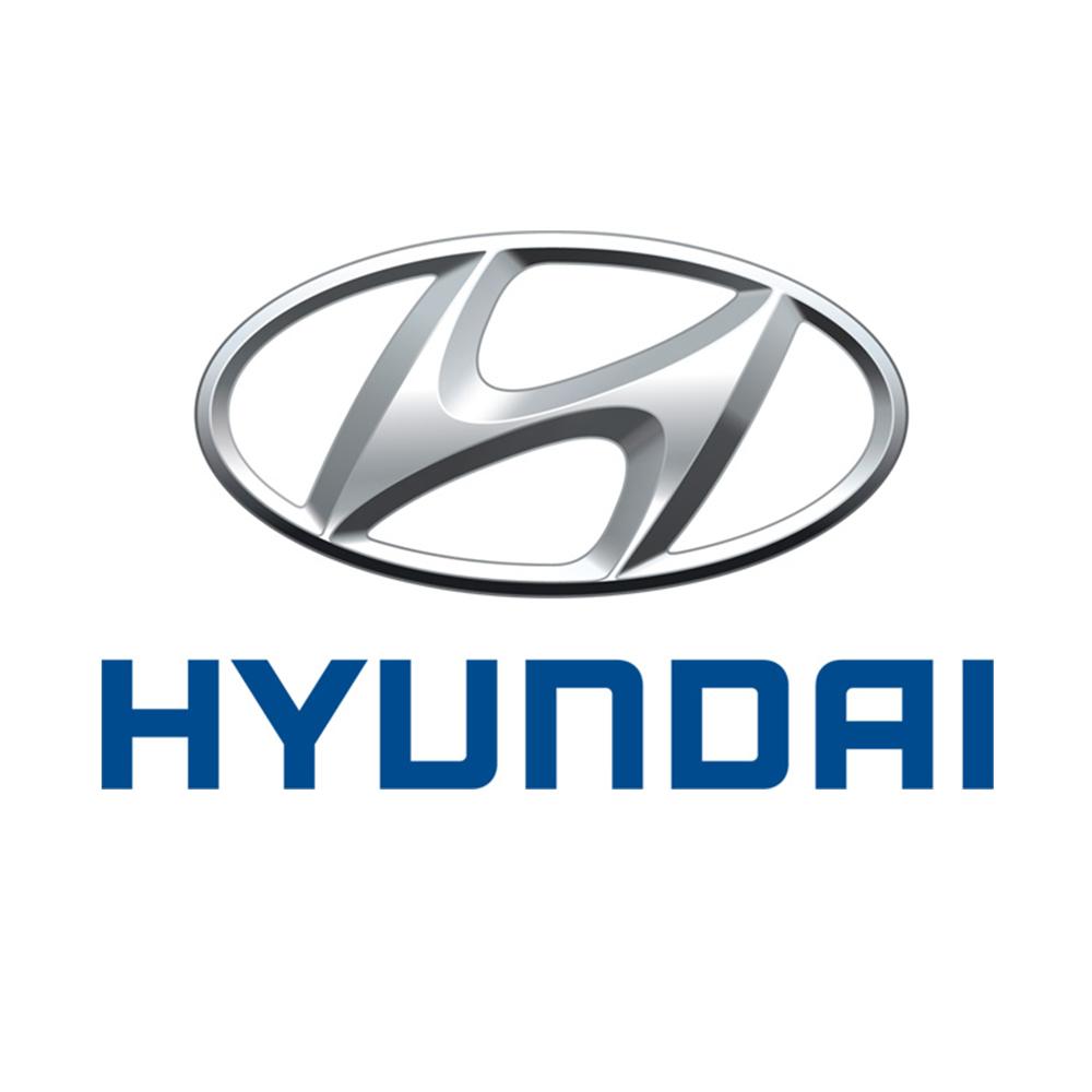 Hyundai_white background.jpg