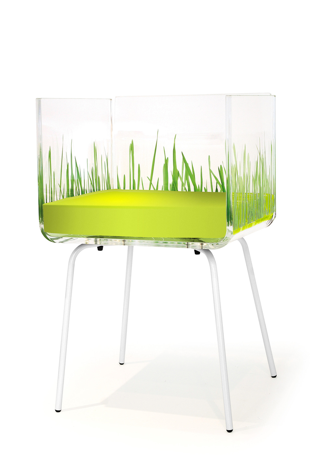 fauteuil cali herbe.jpg