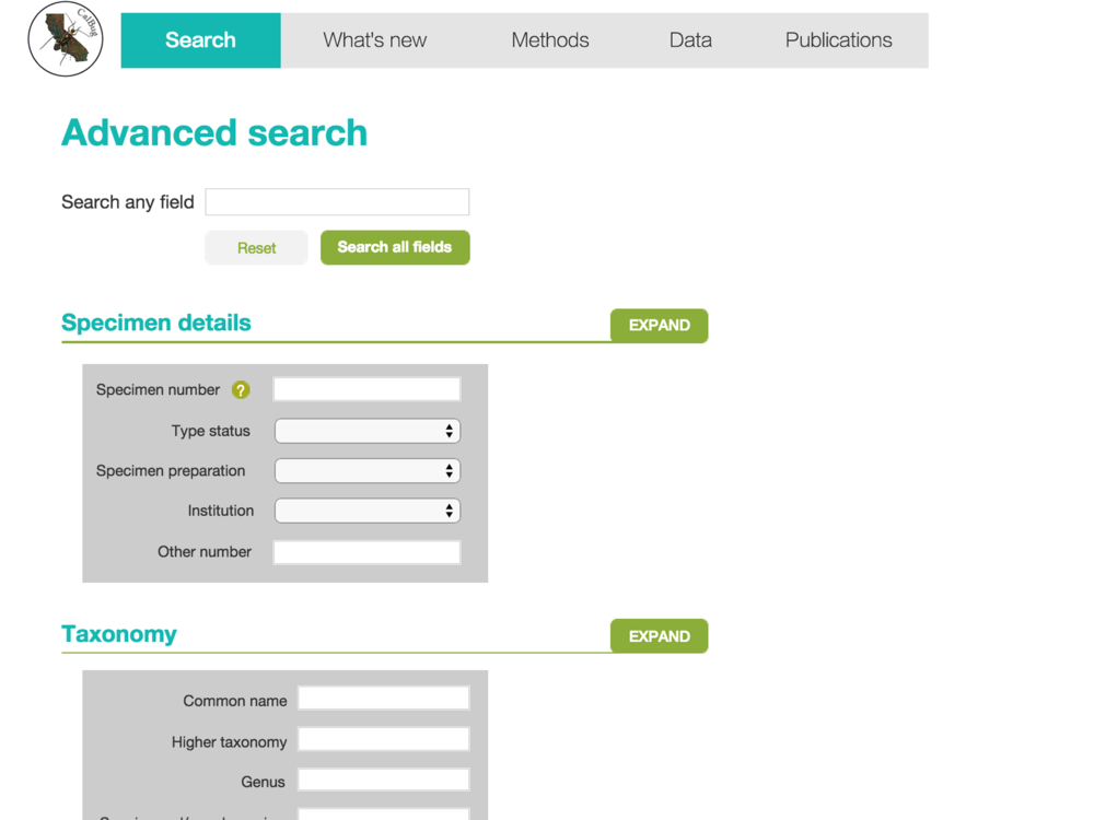 Mockup: New advanced search