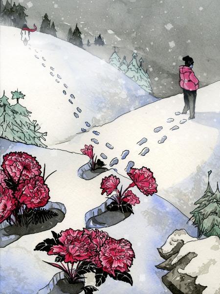 Pink Carnations Web.jpg