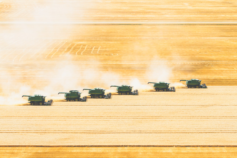 Aerial-Combine-Harvest-Altona-Manitoba-3.jpg