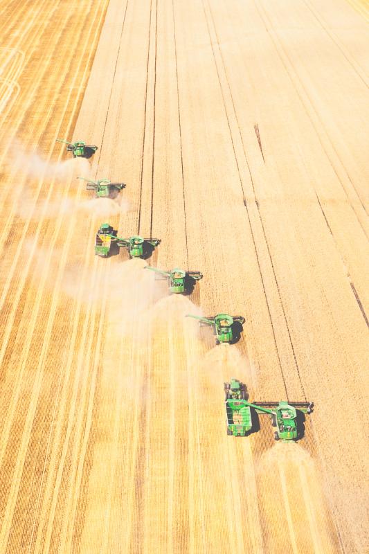 Aerial-Combine-Harvest-Altona-Manitoba-13.jpg