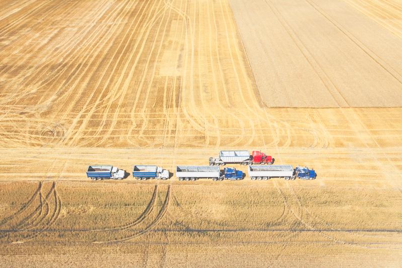 Aerial-Combine-Harvest-Altona-Manitoba-18.jpg