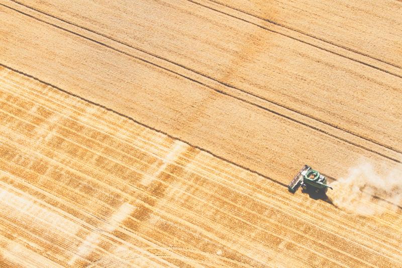 Aerial-Combine-Harvest-Altona-Manitoba-22.jpg