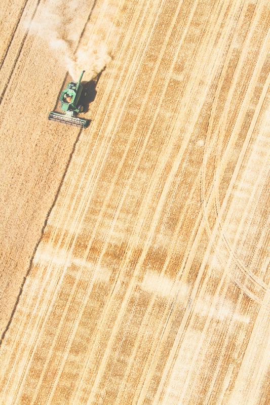 Aerial-Combine-Harvest-Altona-Manitoba-23.jpg