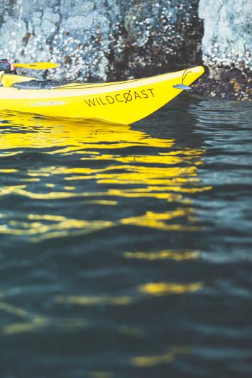 Orca-Camp-Wild-Coast-Adventures-British-Columbia-3-2.jpg