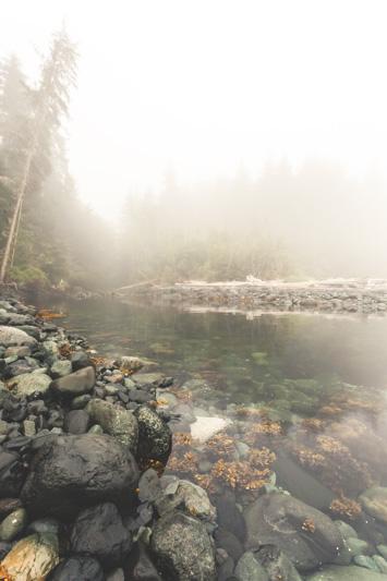Orca-Camp-Wild-Coast-Adventures-British-Columbia-5-2.jpg