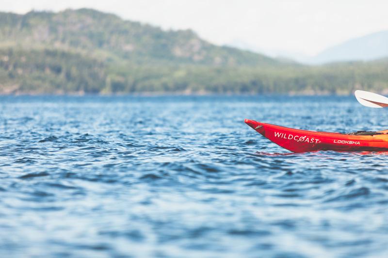 Orca-Camp-Wild-Coast-Adventures-British-Columbia-21.jpg