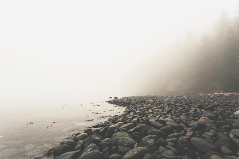 Orca-Camp-Wild-Coast-Adventures-British-Columbia-31.jpg