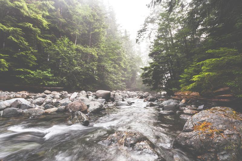 Orca-Camp-Wild-Coast-Adventures-British-Columbia-41.jpg