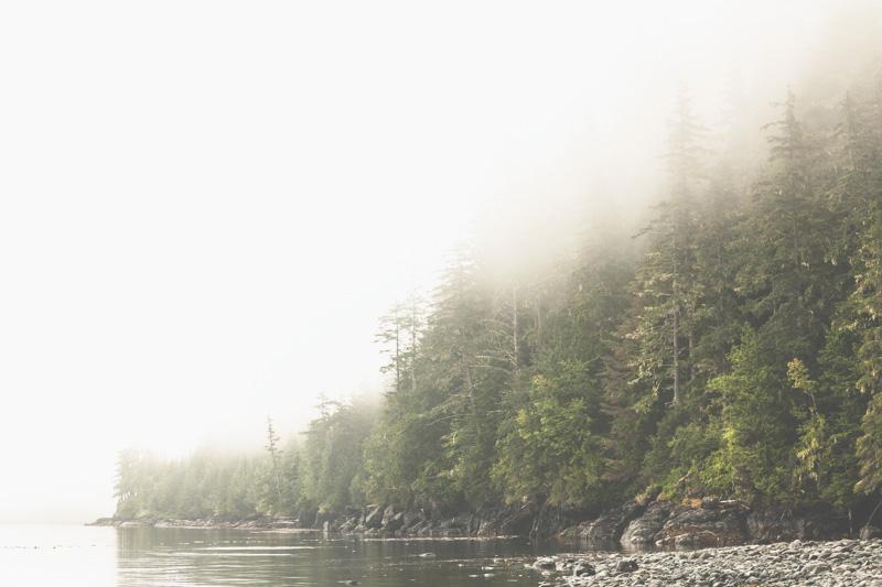 Orca-Camp-Wild-Coast-Adventures-British-Columbia-55.jpg