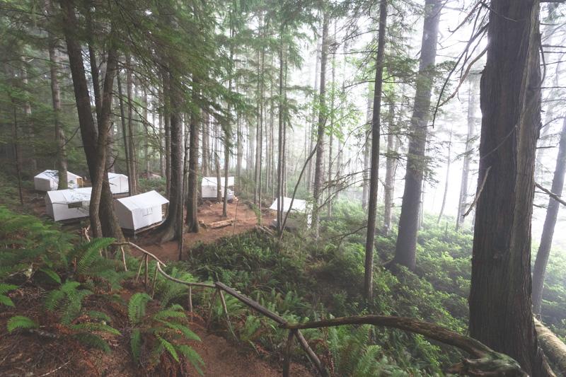 Orca-Camp-Wild-Coast-Adventures-British-Columbia-36.jpg